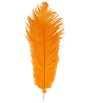 Ostrich Feather 1st Quality (30-33 cm) 12 pcs.