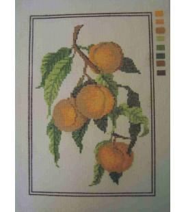 Cañamazo Tapestry - Nº 85 - 22cm x 32cm