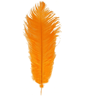 Pluma de Avestruz 1ª Calidad (38-45 cm) 6uds.