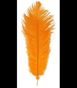 Plume d'autruche 1ère qualité (46 cm ou plus) 6uds.