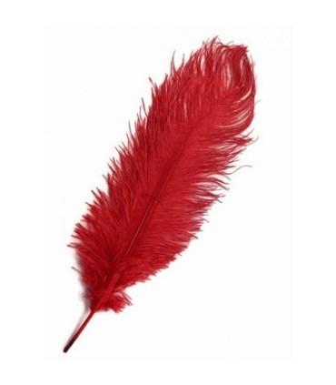 Pluma de Avestruz 2ª Calidad (35-40 cm) - 75 UNIDADES (Rojo/Granate)