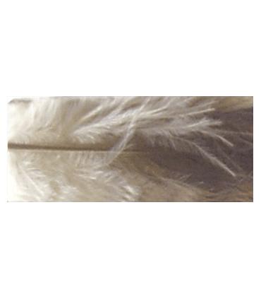 Pluma Gallo Pequeña (17cm aprox.) - 90 uds. Aprox. - 11 colores