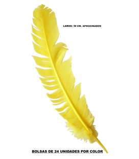 Indian Feather (30CM APROX.) - 24 UNITS. - 10 COLORS