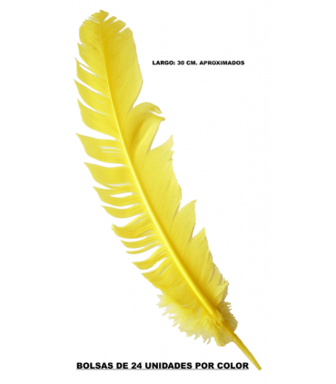 Plumes indiennes