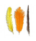 Natural feather