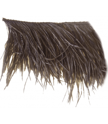 Fleco Ostrich